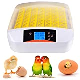 Aceshin Automatic Egg Hatcher Incubator with Temperature Control, Digital Poultry General Purpose Incubators for Chickens Ducks Birds (56 Eggs)