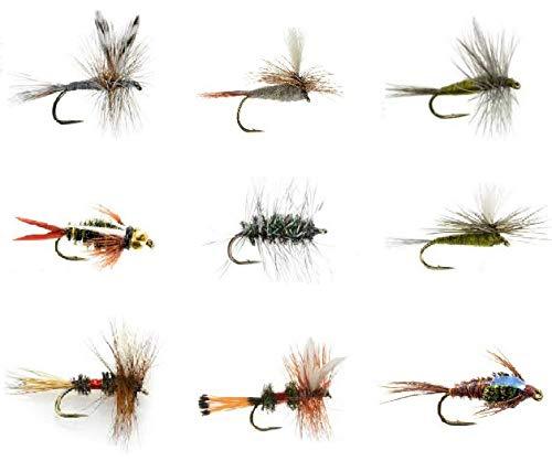 Feeder Creek Fliegen Angeln lockt Wet Sortiment für Forellen Angeln und andere Süßwasser Fische–36/72/108 Nass und Trocken Fliegen–9Mustern in 4Größen, Verschiedene, Varies