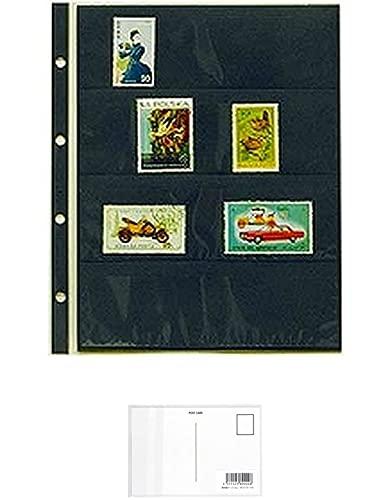 テージー コレクションアルバム スペアポケット 大型切手単片用 4段黒台紙 10枚入 CA-304S + 画材屋ドットコム ポストカードA