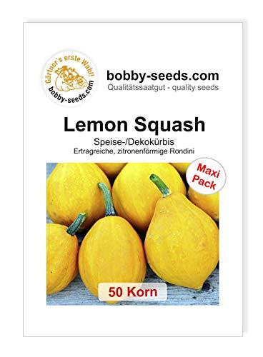 Lemon Squash Kürbissamen von Bobby-Seeds, 50 Korn