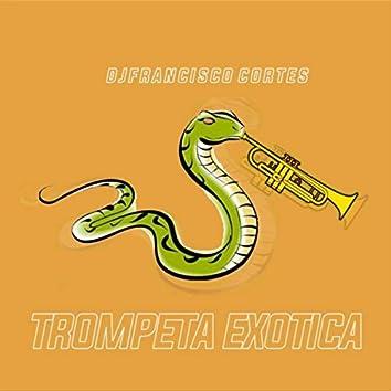 Trompeta Exotica