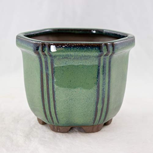 Semi-Cascade Hexagon Dark Green Shohin Bonsai Pot w/ Mesh - 4.25'x 4.25'x 3.25'