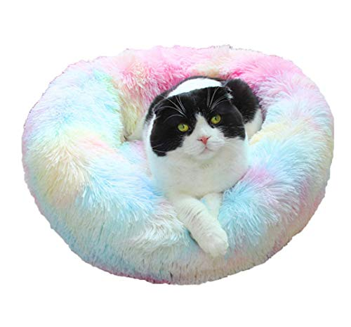 XIAJIE Pet Bed, Fluffy Luxe Soft Plush Round Cat and Dog Bed, Donut Cat and Dog Cushion Bed, Self-Warming and Improved Sleep, Orthopedic Relief Shag Faux Fur Bed Cushion (50, Rainbow)