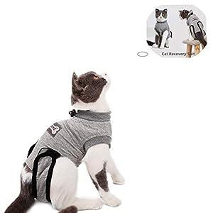 Yuhtech Gilet de Récupération de Chat, Cat Professionnel Restauration Convient pour abdominaux Collerette des plaies ou des Maladies de la Peau