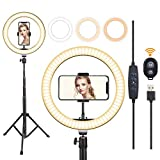 10' Selfie Ring Light with Tripod Stand & Flexible Phone Holder, Dimmable LED Desk Ringlight for Makeup, Photography, YouTube Video, Tiktok, Live Stream, Vlog, Compatible with iPhone&Android