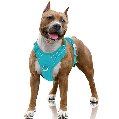 BARKBAY No Pull Dog Harness Large Step in Reflective Dog Harness with Front Clip and Easy Control Handle for Walking Training Running with ID tag Pocket(Blue,L)