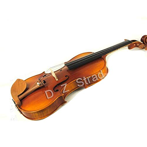 D Z Strad Viola Model N2011 with D Z Strad Bow, Case, Rosin and Shoulder Rest (Size - 16')
