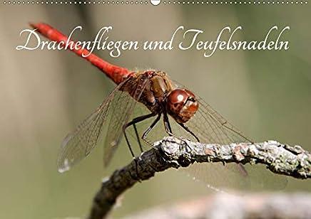 Drachenfliegen und Teufelsnadeln (Wandkalender 2020 DIN A2 quer): Die bezaubernde Welt der Libellen, eingefangen mit dem Macro-Objektiv des Natur- und ... Thomas Freiberg. (Monatskalender, 14 Seiten )