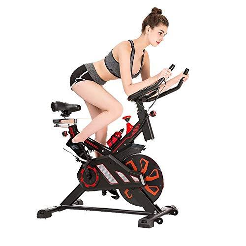 Wanlianer Bicicleta reclinada Spinning Bike...