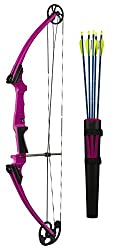 Best Compound Bows for Archery in 2020 - Reviews & Buyer's Guide 11