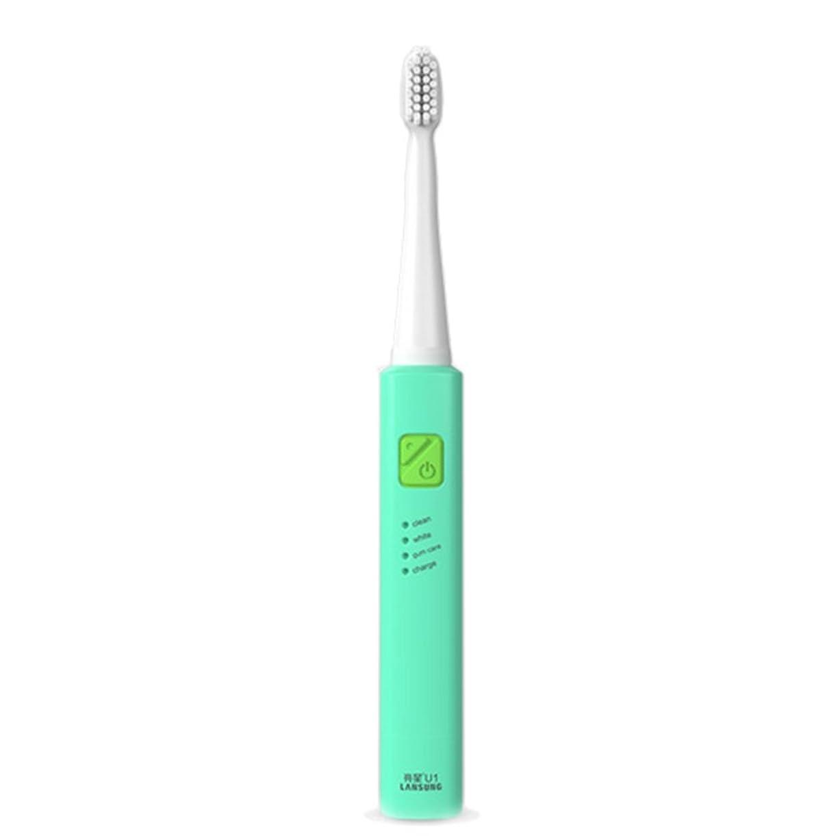 持ってるコイル胚芽電子歯ブラシ 超音波ロータリー ノンスリップ防水歯ブラシ 歯科口腔衛生