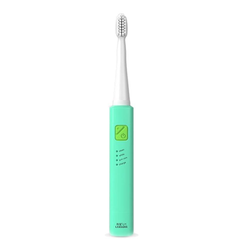 権利を与える前提熱電子歯ブラシ 超音波ロータリー ノンスリップ防水歯ブラシ 歯科口腔衛生