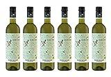 Dürnberg - Grüner Veltliner Falkenstein Weinviertel DAC 2018 - Qualitäts Weißwein aus Österreich, trocken (6 x 0,75l)