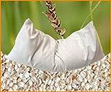 Cuscino imbottito di miglio biologico, dimensioni di 40 x 40 cm