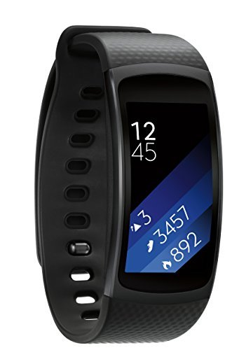Samsung サムソン Gear Fit 2 SM-R360 black (Large) [並行輸入品]
