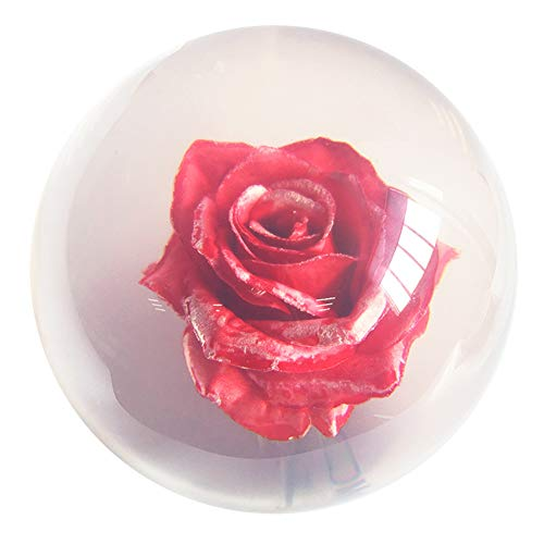 Klare Rote Rose Bowlingkugel Transparent - 14Kg
