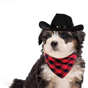 WODISON Cool Pet Dog Cat Cowboy Costume Hat and Bandana Scarf Set of 2