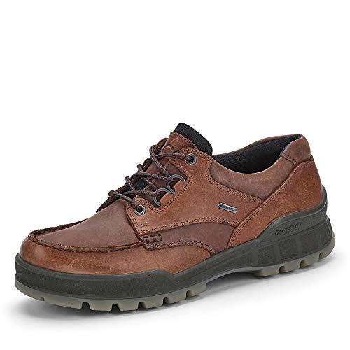 Ecco Darren Plain Toe Gore-tex® Shoes - Waterproof