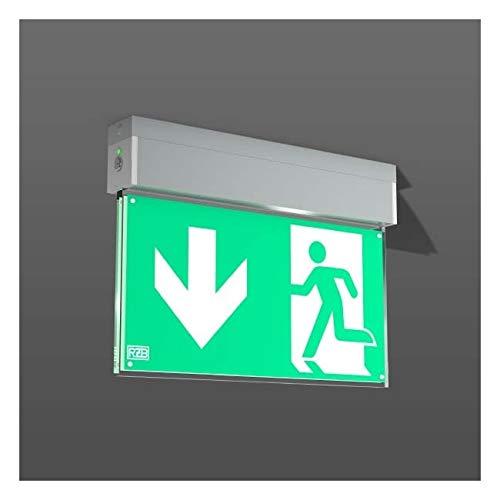RZB Zimmermann LED-Notleuchte 672218.004.1 GSUN-S Sicherheitsleuchte 4051859397212