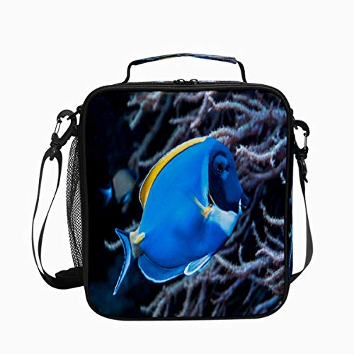 Fish Surgeonfish Coral Premium Insulated Lunch Box Spacious Durable School Lunch Bag for Kids Boys Girls Reusable Leakproof Cooler Tote Bag with Removable Shoulder Strap for Adults Men Women