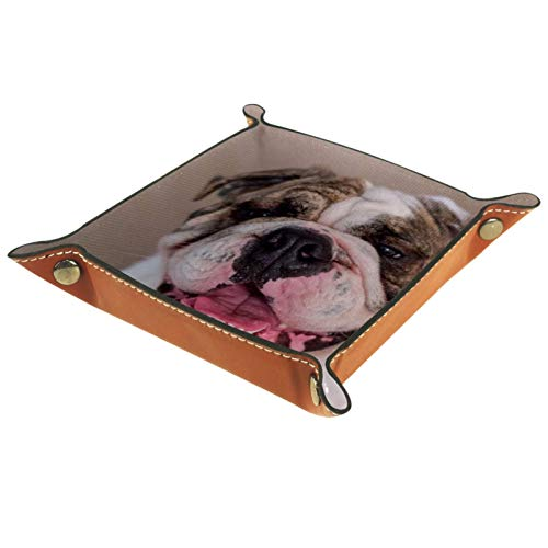 Tablett Leder,Englische Bulldogge suchen,Leder Münzen Tablettschlüssel für Schmuck,Telefon,Uhren,Süßigkeiten,Catchall-Tablett für Männer & Frauen Großes...