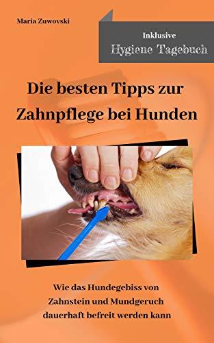 Die besten Tipps zur Zahnpflege bei Hunden: Wie das Hundegebiss von Zahnstein und Mundgeruch dauerhaft befreit werden kann