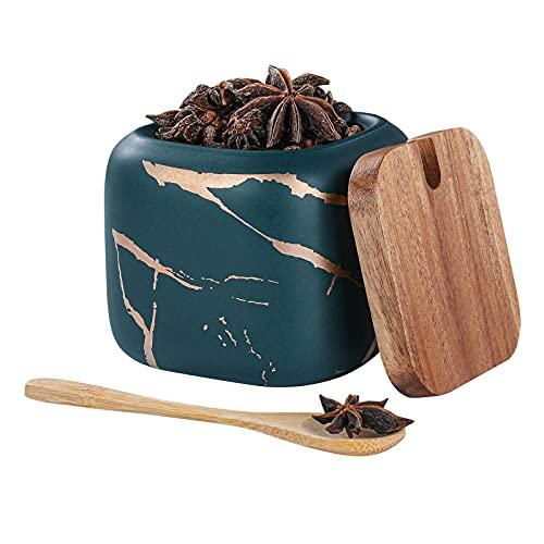 Zuccheriera in Ceramica, Condimento Box con Coperchio e Cucchiaio, Spezia Jar Cucina Scatola Barattolo di Spezie, Utensili da Cucina Forniture per Spezie (Verde)