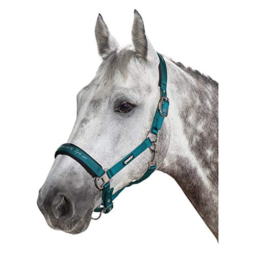 ESKADRON Halfter DOUBLE PIN GLOSSY (Classic Sports HW19), tealblue, Pony groß
