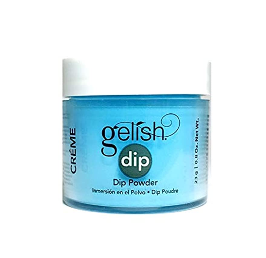 遺産電気のメロディーHarmony Gelish - Dip Powder - No Filter Needed - 23g / 0.8oz