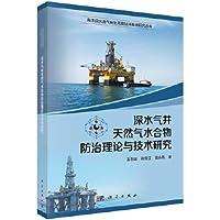 深水气井天然气水合物防治理论与技术研究
