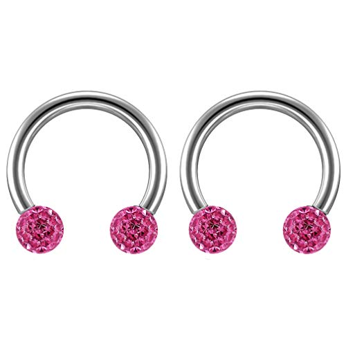 2 st 16 Guage 1,2 mm Circulaire Barbell Oorbellen Daith Forward Helix 16 g 1,2 mm Titanium Tragus Anti Rook Rim Oor Lobe Wenkbrauw Lip Cartilage Pinna Bridge Rose