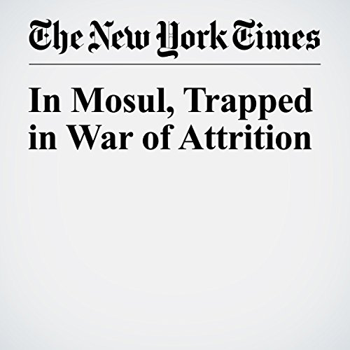 In Mosul, Trapped in War of Attrition cover art