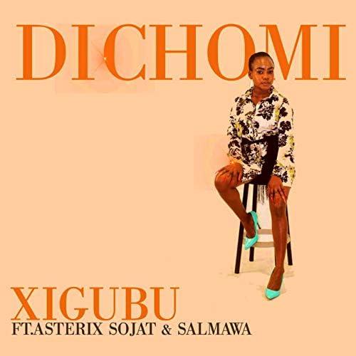 Xigubu feat. Asterix Sojat & Salmawa