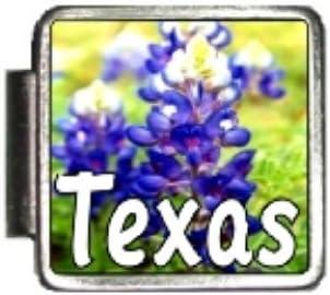 Clearly Charming Texas State Flower Bluebonnet Photo Italian Charm Bracelet Link