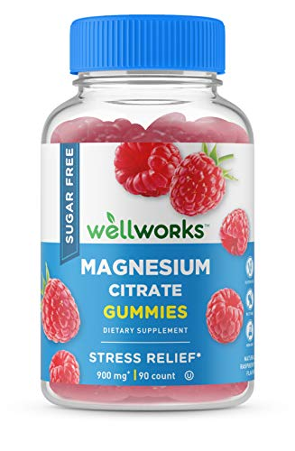 WellWorks Sugar Free Magnesium Citrate - Great Tasting Natural Flavor Gummy Supplement – Gluten Free Vegetarian Chewable – For Sleep, Anxiety, Stress Relief Support – for Adults Men Women – 90 Gummies