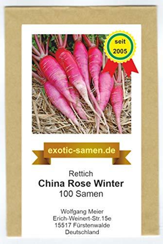 Rettich - Sommer- und Winterrettich - China Rose Winter (100 Samen)