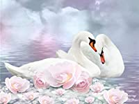 大人のためのDIY5Dダイヤモンド塗装キット、家の壁の装飾愛好家のためのフルドリルクリスタルラインストーン刺繡白い白鳥45x60cm