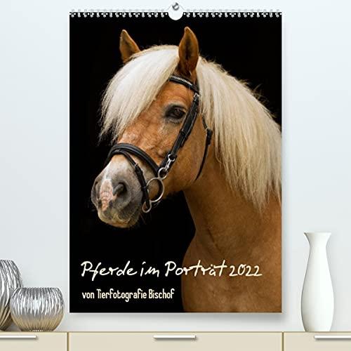 Pferde im Portait (Premium, hochwertiger DIN A2 Wandkalender 2021, Kunstdruck in Hochglanz)