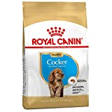 ROYAL CANIN Cocker Spaniel Junior Food 3kg