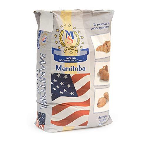 Farina MANITOBA - Molino Scoppettuolo - 5 Kg