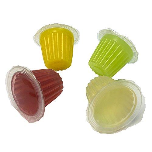 Terrabest 32 Stück Beetle & Insekt Jelly Premium Tropic Mix Reptilien Futterinsekten