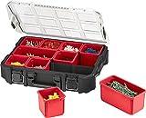 Keter 229805 Boite à outils organiseur master pro 16', Noir/Gris