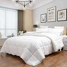 MASVIS Queen Comforter Duvet All-Season Reversible Down Alternative Quilted Comforter and Duvet Insert with Corner Tabs - Hypoallergenic -Double Plush Fabric(White, Full/Queen)