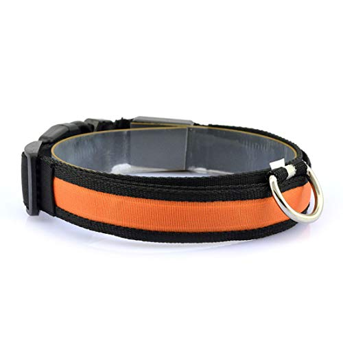 CSMZ Veilige En Duurzame LED-licht Halsband Nylon Halsband Licht Met Hond LED-licht Halsband Nachtlampje (Color : Orange, Size : M)