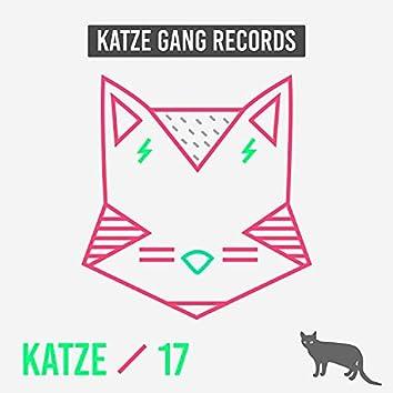 Katze 17