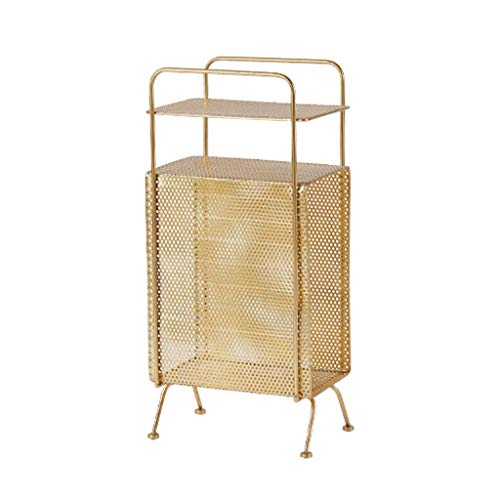 WQF Magazine Rack Shopping Basket Simple Interior Small Bookshelf Bathroom Toilet Storage Cupboard Sofa Side Shelf Best Support for Filing cabinets (Color: Gold, Size: 34 20 71 cm)