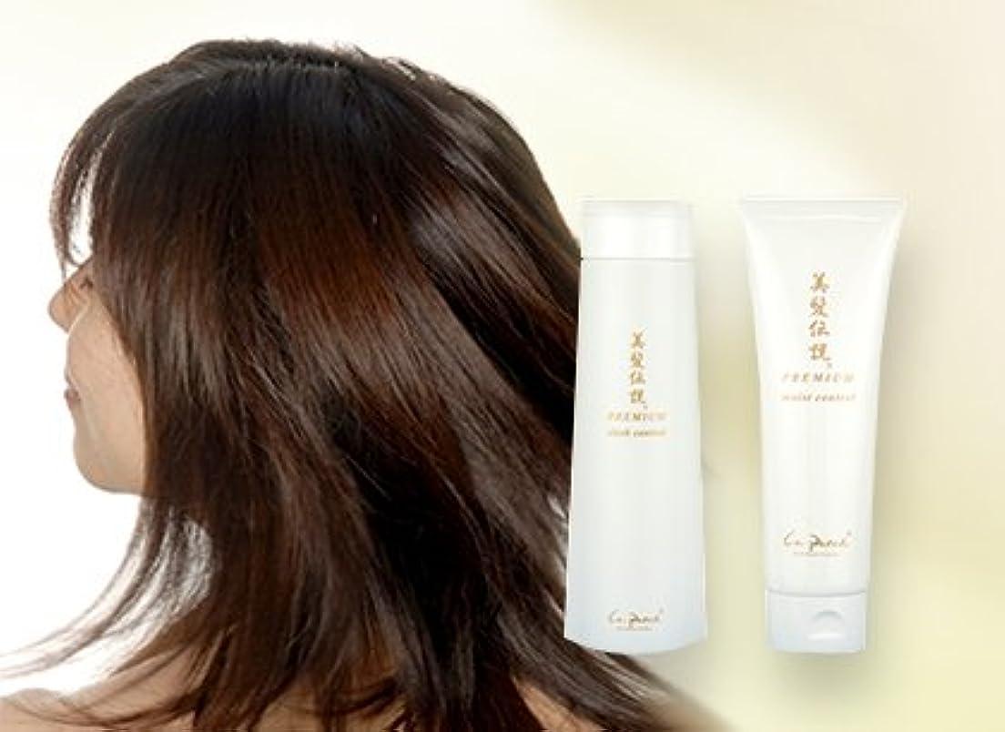 火山学者楽しむ露出度の高い美髪伝説プレミアムスリークコントロール&モイストコントロールセット