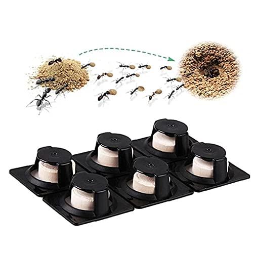 6pcs Repeler Plagas Ultrasónicos, Trampa Control Plagas Efectivo Matado Termita Hormigas Rojas Destruye Cebos Hormigas