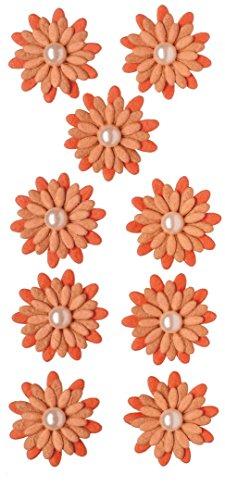 RÃ ¶ ssler 9100–064Blossom mit Pearly Zentren Aufkleber, Natural weiß (9Stück) soft orange (pack of 9)