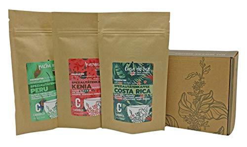 carabica Kaffee Geschenkbox und Probierset | 3x 125g Filterkaffee | Spezialitätenkaffee (3x 125g gemahlen)
